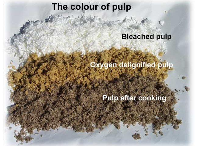 Pulp Bleaching
