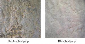 Pulp bleaching process
